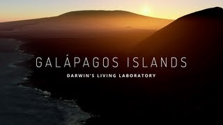 Download Explore the Galapagos Islands with Google Maps Video