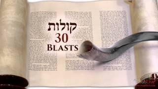Download Understanding the Shofar Blasts on Rosh Hashanah Video