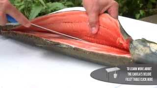 Download How To Fillet a Salmon Video