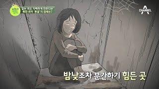 Download 북한 최악 '똥굴'?! 없는 죄도 자백하게 만든다는 이곳의 정체는? |이제 만나러 갑니다 356회 Video