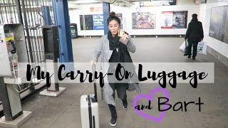 Download Best Carry-On Luggage   Flight Attendant Life   VLOG 8 Video