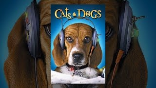 Download Cats & Dogs Video
