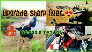 Download upgrade power tabung snapan angin sharp tiger untuk paser ikan Video