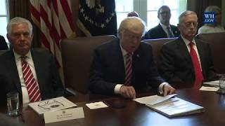 Download President Trump Leads a Cabinet Meeting Video