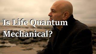 Download Is Life Quantum Mechanical? - Prof. Jim Al-Khalili Video