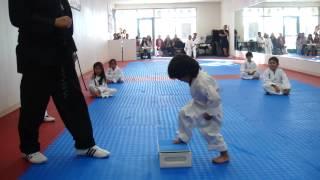 Download 3-Year-Old Tries to Break Board in Taekwondo | Taekwondo Kid Video