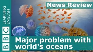 Download BBC News Review: Major problem with world's oceans Video