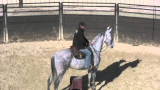 Download What to do when riding a horse that gets out of control. Video