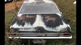 Download YARD FULL OF NEGLECTED MUSCLECARS FOUND Video