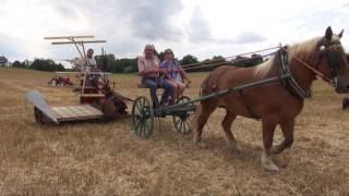 Download Travaux aux champs d'antan - Edition 2016 Video