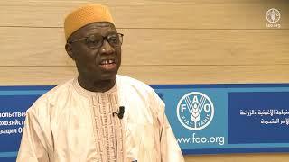 Download Déclaration de S.E.M. Kassoum Denon, Ministre-Commissaire à la sécurité alimentaire, Mali Video