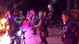 Download Banda Tierra de Venados - La vaquilla Video