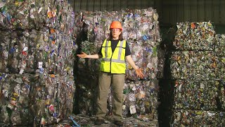 Download How Recycling Works: Behind the Scenes at the MRF Video