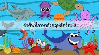 Download Sea Animal คำศัพท์สัตว์ทะเล Video
