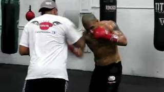 Download Miguel Cotto Training for Manny Pacquiao 3 Video