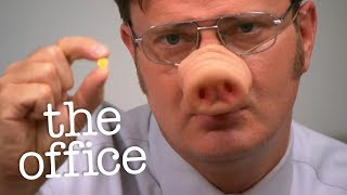 Download Dwight Finds a Pill - The Office US Video