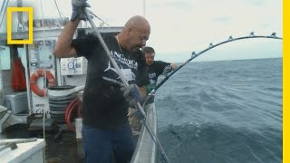 Download Catch of the Week - The Last Battle | Wicked Tuna Video