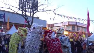 Download (múa sư tử ) Dong Thanh Lion Dance at Cabramatta Mall - Cabramatta Moon Cake Festival 4th Sept 2016 Video
