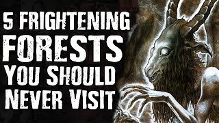 Download 5 FRIGHTENING FORESTS You Should Never Visit Video