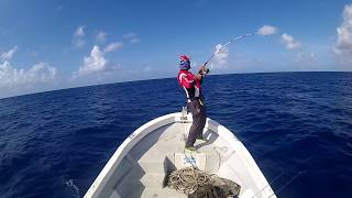Download Yellowfin Tuna surface strikes - NS Black Hole, Maria Loaded, Dean Silvester Video