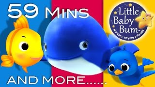 Download The Little Blue Whale | Plus Lots More Nursery Rhymes | 59 Minutes Compilation from LittleBabyBum! Video