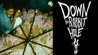 Download The Mouse Utopia Experiments | Down the Rabbit Hole Video