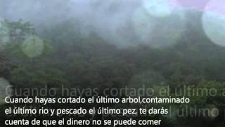 Download Bosques de Costa Rica Video