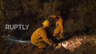 Download Israel: 80,000 people evacuated as Haifa blaze continues Video