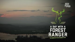 Download A Walk In Kashmir With A Forest Ranger | Dachigam National Park | Unique Stories from India Video