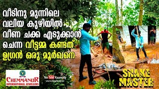 Download Housewife sees a Cobra in front of the house   Snakemaster   Vava Suresh   EP 396 Video