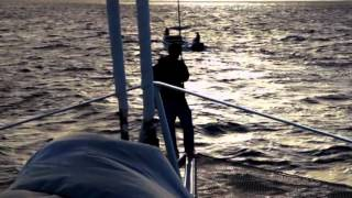 Download Richard Branson: The Ocean Explorer Video