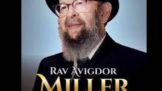 Download Rav avigdor miller: about rav Kook Video