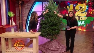 Download Keep Your Tree Healthy with This Lush Trick Video