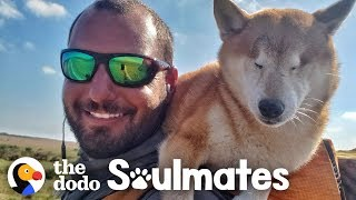 Download Guy Carries His Blind Dog 800 Miles To Help Get Her Confidence Back | The Dodo Soulmates Video
