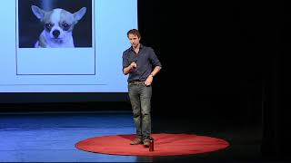 Download Your Brain, Your Life | Jared Horvath | TEDxYouth@ReddamHouse Video