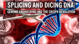 Download Splicing and Dicing DNA: Genome Engineering and the CRISPR Revolution Video