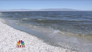 Download Salton Sea Residents React After Trump Executive Order On EPA Video