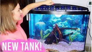 Download NEW Setting Up My Tropical Fish Tank Video