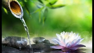Download Solfeggio 528 Hz | Water Sounds | Tibetan bowls | OM Mantra ➤ Positive Healing Energy Video