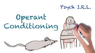 Download What is Operant Conditioning? Video