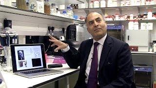 Download Malaria diagnosis: past, present and future Video
