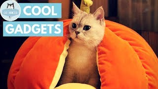 Download 10 Incredible Gadgets For Cats Video