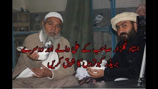 Download ustad Gulzar sahab k Ali waly or chuha or batera Breedar pigeons Full HD 09/03/2019 Video