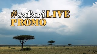 Download safariLIVE welcomes you to the Maasai Mara! Video