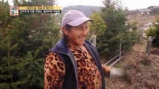 Download 사장님도, 직원도, 여기가 좋단다! (feat.볼리비아 직원들) |서민갑부 200회 Video