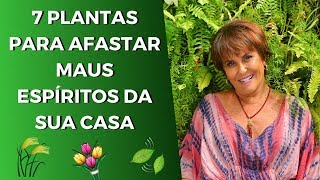 Download Sensitiva Márcia Fernandes e as 7 Plantas que Afastam Maus Espíritos da sua Casa! Video