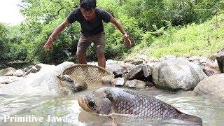 Download Technology Primitive Jawa - Jebak Ikan Dapat Ikan Besar Video