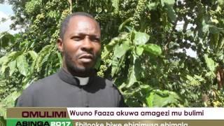 Download Omulimi Asinga: Wuuno Faaza akuwa amagezi mu bulimi Video