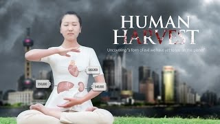 Download Human Harvest - Trailer Video