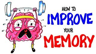 Download How To Improve Your Memory RIGHT NOW! Video